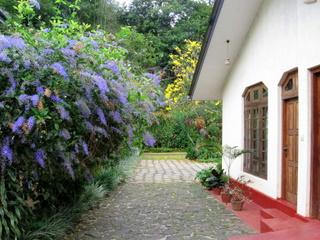 Front door of our house in Dangolla