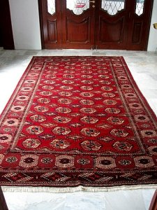 Oriental rug in entry hall